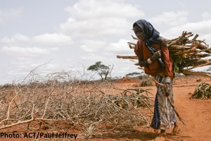 RS3972_2011_Ethiopia_drought-7099